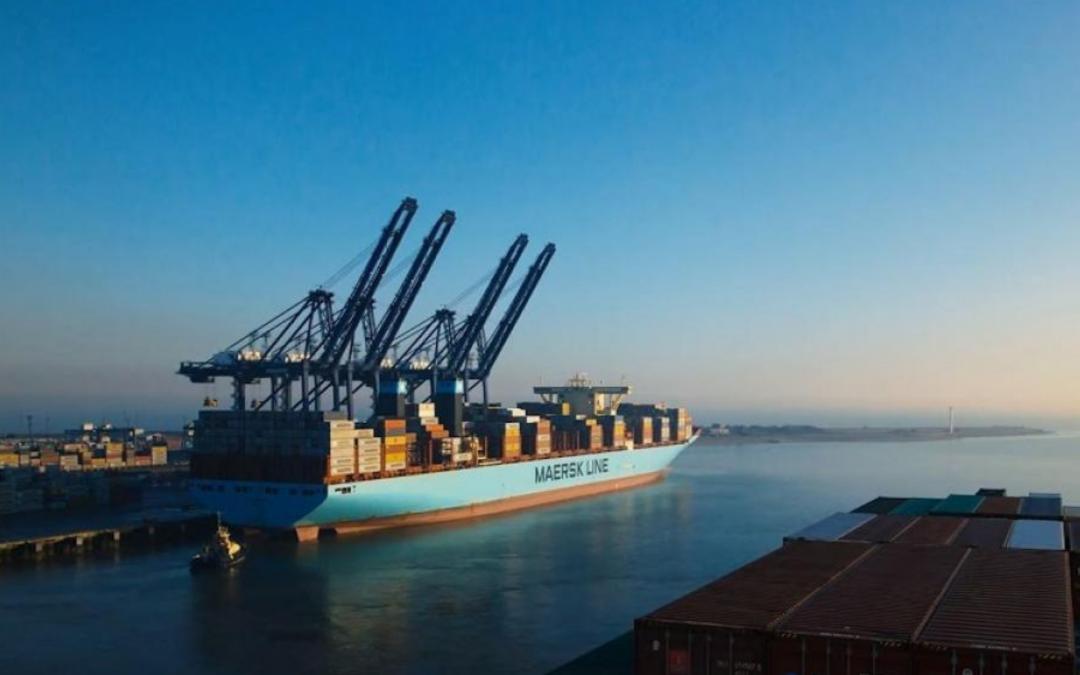 Jenkins Group acquires Marexport UK