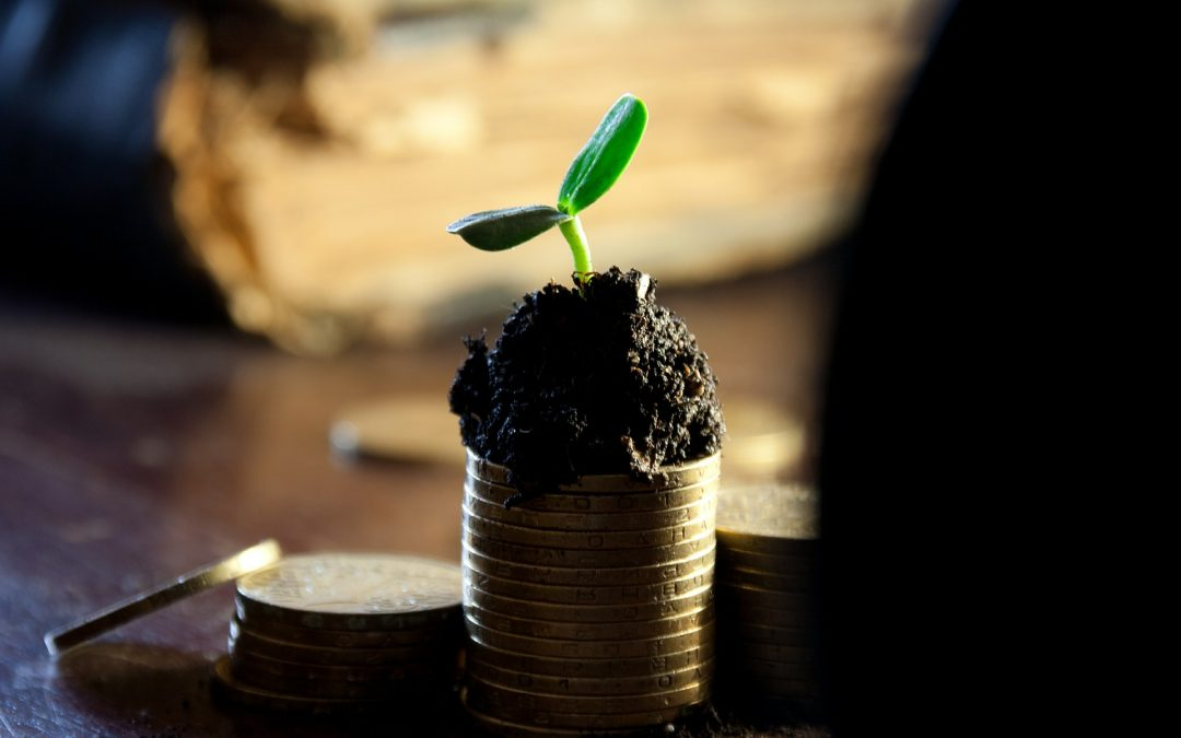 How to make the most of the Recovery Loan Scheme